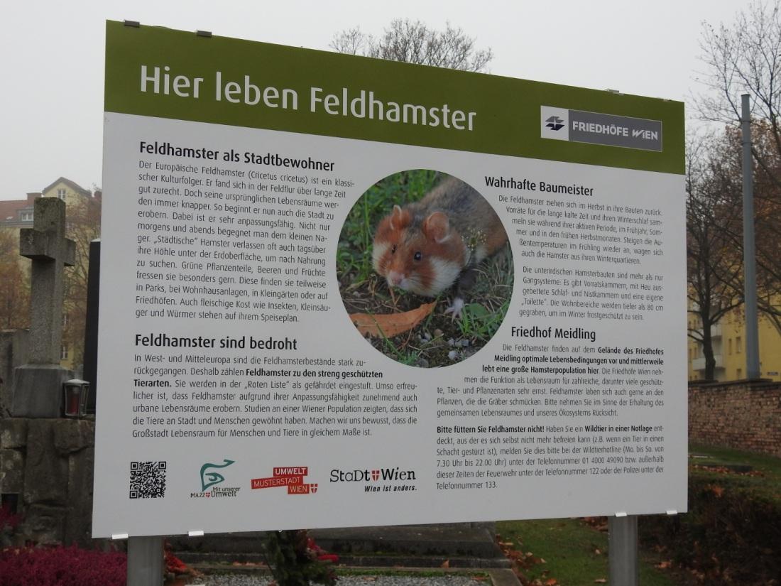 Hinweistafel über Hamster am Friedhof