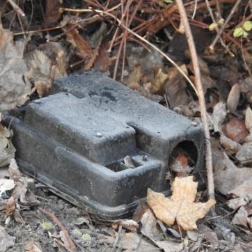 Rattenköderbox umgeworfen
